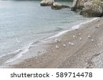pebbles shore landscape with... | Shutterstock . vector #589714478