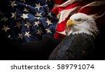 American Bald Eagle   Symbol O...