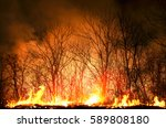hot fire burning the forest at... | Shutterstock . vector #589808180