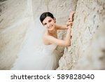 Bride Portrait. Wedding...