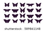 Stock vector set of butterflies ink silhouettes glowworms fireflies and butterflies icons isolated on white 589861148