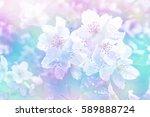 white jasmine. the branch... | Shutterstock . vector #589888724
