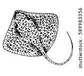 vector stingray  ray fish... | Shutterstock .eps vector #589983356