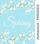 card with spring flowers on... | Shutterstock .eps vector #590020310