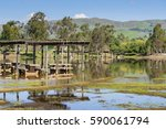 flooded meadow and picnic... | Shutterstock . vector #590061794