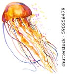 Jellyfish Watercolor...