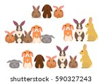 Stock vector group of rabbits 590327243
