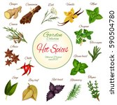 hot spice and condiment poster... | Shutterstock .eps vector #590504780