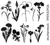 set of spring flowers... | Shutterstock .eps vector #590532926