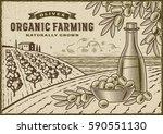 olive organic farming landscape.... | Shutterstock .eps vector #590551130