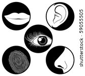 Five senses icons - vector - stock vector