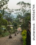 Small photo of White stupa road under Adam's Peak in Sri Lanka