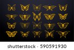 Stock vector set of gold butterflies ink silhouettes glowworms fireflies and butterflies icons isolated on 590591930