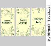 set of three vertical banners ... | Shutterstock . vector #590631734