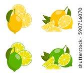 icon set lemon and lime  vector ... | Shutterstock .eps vector #590716070