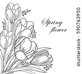 Vector Bouquet With Outline...