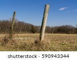 Wooden Fence Posts In The...