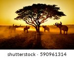 chang thailand with nature at... | Shutterstock . vector #590961314