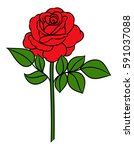 Flower Rose  Red Buds And Gree...