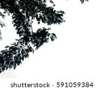 raindrops on window after... | Shutterstock . vector #591059384