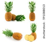pineapple fruit isolated on... | Shutterstock . vector #591088013