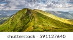 panoramic landscape of summer... | Shutterstock . vector #591127640