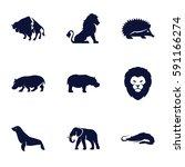 zoo icons set. set of 9 zoo... | Shutterstock .eps vector #591166274