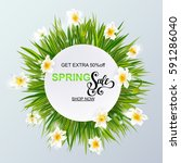 advertisement about the spring... | Shutterstock .eps vector #591286040