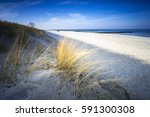 baltic sea with golden yellow... | Shutterstock . vector #591300308
