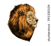 lion proud  face in profile ... | Shutterstock .eps vector #591330104
