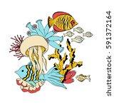 vector under water sea life... | Shutterstock .eps vector #591372164