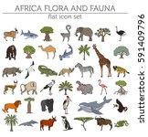 flat africa flora and fauna map ... | Shutterstock .eps vector #591409796