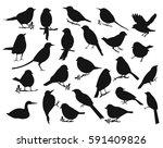 Set Of A Silhouette Birds