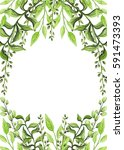 herbal frame with watercolor... | Shutterstock . vector #591473393