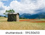 Wheat field in the Provance in France. - stock photo