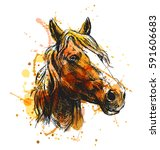 colored hand sketch horse head. ... | Shutterstock .eps vector #591606683