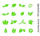leave leaf icon set vector | Shutterstock .eps vector #591636488