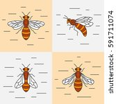 set of linear icons bee. vector ... | Shutterstock .eps vector #591711074