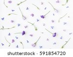 flowers composition. pattern... | Shutterstock . vector #591854720