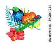tropical flowers.watercolor... | Shutterstock . vector #591864284