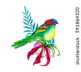 tropical flowers.watercolor... | Shutterstock . vector #591864320