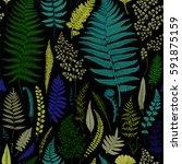 seamless pattern. ferns.... | Shutterstock .eps vector #591875159