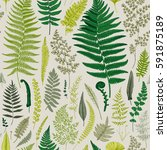 seamless pattern. ferns.... | Shutterstock .eps vector #591875189