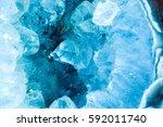 cross section slice detail... | Shutterstock . vector #592011740