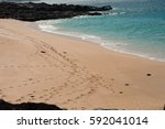 hawaiian landscapes | Shutterstock . vector #592041014