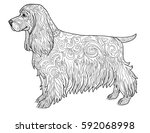 spaniel dog doodle coloring... | Shutterstock .eps vector #592068998
