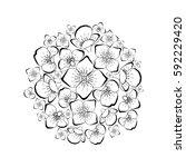 beautiful flower ball sphere...   Shutterstock .eps vector #592229420
