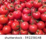 tomatoes   Shutterstock . vector #592258148