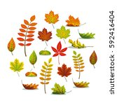 set with different autumn leaves | Shutterstock .eps vector #592416404