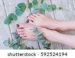 woman legs with beautiful olive ... | Shutterstock . vector #592524194